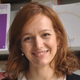 Stefania Bellelli